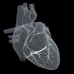 Mesh Heart