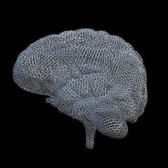 Mesh Brain