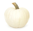 White autumn pumpkin isolated on white