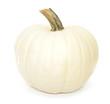White autumn pumpkin isolated on white