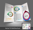 Tri-fold Interior Designers back brochure design