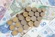 Polish money with arrow finance abstract sign