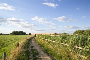 Countryside landscape of track leading through fields on Summer