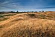 dry grass on hills in morning sunlight
