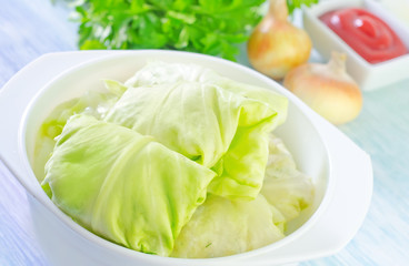 cabbage leaf with meat
