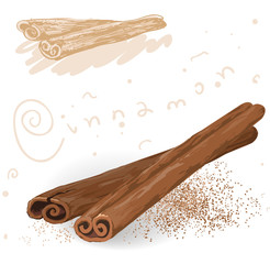 Word spices. Cinnamon. Vector.