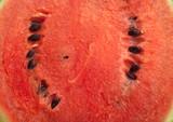 Water melon inside background