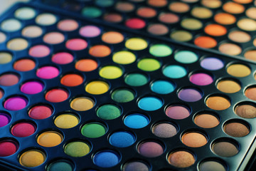 Makeup:  professional eye shadow palette
