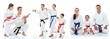 Family karate athletes shows on the white background collage - 55362791