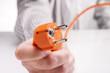 Leinwandbild Motiv Hand hält den Stecker eines Elektrogerätes