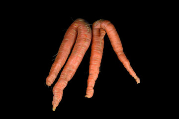 Karottenbeine, q.