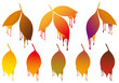 autumn leaves with paint drops, vector set