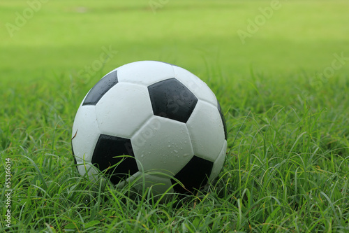 leather Soccer ball on grass