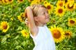 Kind im Sonnenblumenfeld