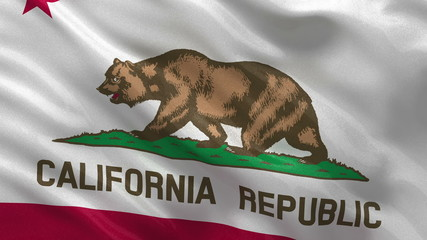 California state flag in the wind seamless loop