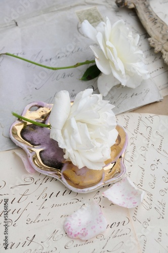 White roses © ischoenrock