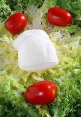 mozzarella fresca e pomodorini