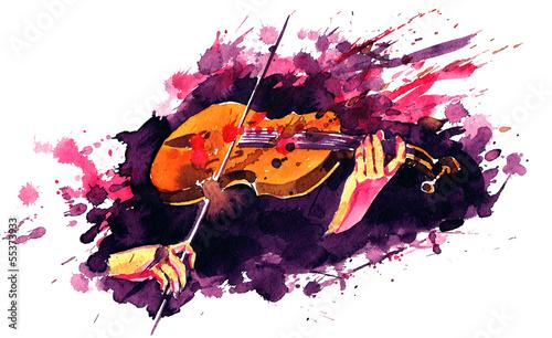 violin - 55373933