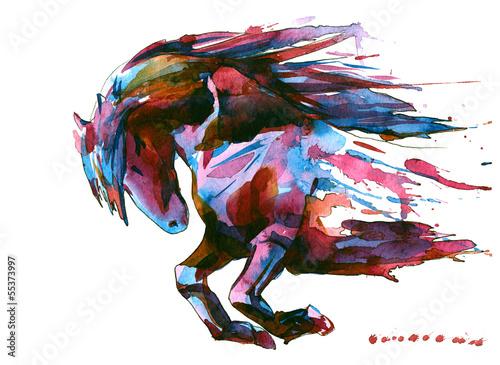 horse - 55373997