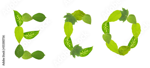 Green Eco word with leaves, isolated on white