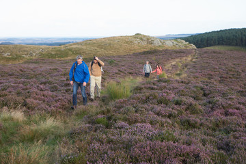 Couples Hiking Across Moorland Covered With Heather
