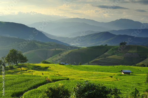 Rice Terrace at Maechaem in Thailand