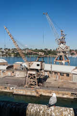 abandoned cranes in dockyard on Cockatoo Island
