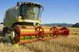 combine harvester - 55385779