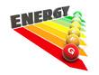 energy_fl