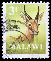 Post stamp from Malawi