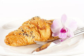 Delicious croissant on white plate