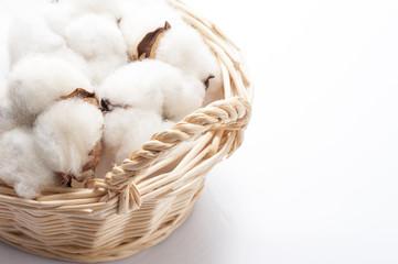 籠に入った綿の実のアップ