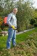 Man spraying plant