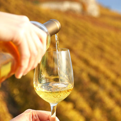 Glass of wine in the hand against vineyards in Lavaux region, Sw
