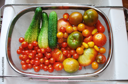 Tomato and Cucumber Harvest in Kitchen Sink 1