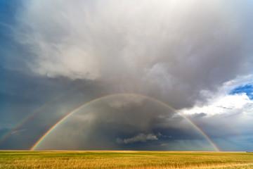 Rainbow over the fields
