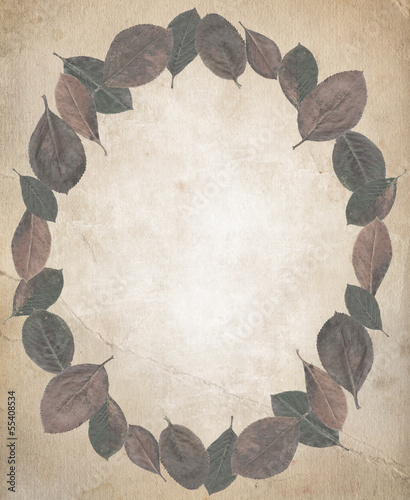 frame of autumn leaves, beautiful background