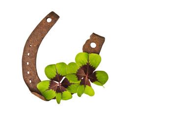 vierblättrige Kleeblätter auf Hufeisen, freigestellt