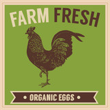 Retro Farm Fresh Organic Eggs
