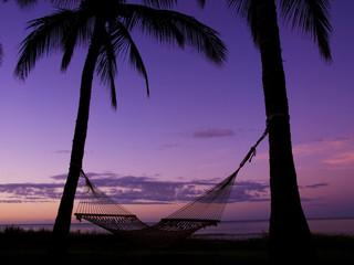 ハワイ州カウアイ島の夜明けとハンモック