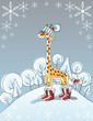 Winter giraffe