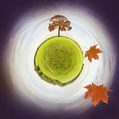 little planet - fall
