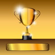 Beautiful realistic vector trophy with space for your text