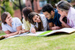 Friends studying outdoors