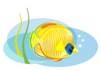 cartoon tropical fish