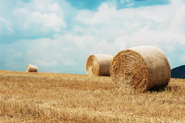 balla fieno grano cereali