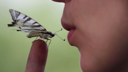 girl with a butterfly on her finger (close-up)