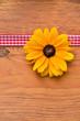 Blume Band Holz Hintergrund