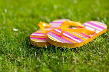 Flipflops im Gras