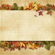 vintage background with autumn leaves with place for text and ph